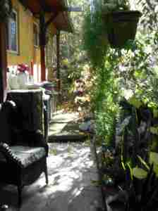 Leah Seabrook's Garden with stream!