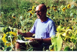 Painting in the Sunflowers